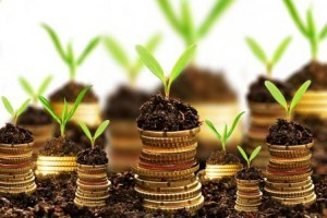 golden-coins-in-soil-with-young-plant-isolated.-money-growth-web