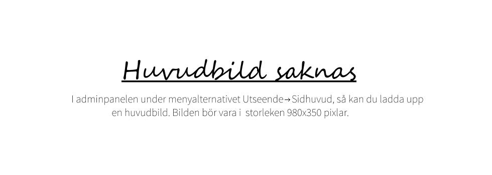 Ankans blogg