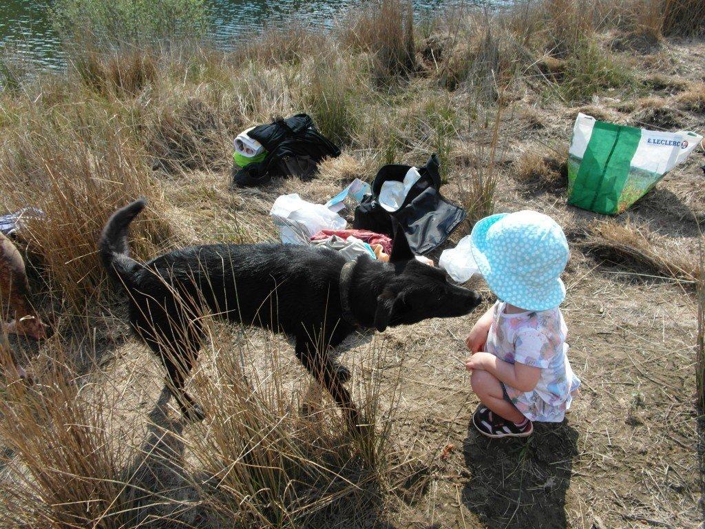 Pyret var mer road av att leka med Saphira.