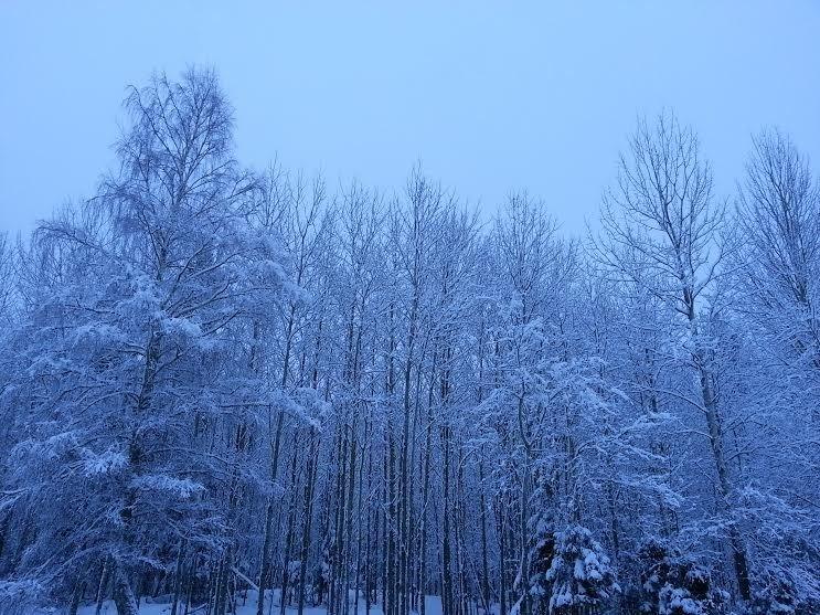 Fint men snöigt hos oss!