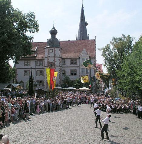 2008SchuetzenfestAlfeld238_Fahnenschwenken_web