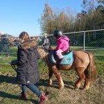 Ponny ridning