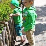Mina fina söner tittar på djuren.