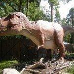 Dinosaurier, Parken Zoo, Vrålogram, Dino