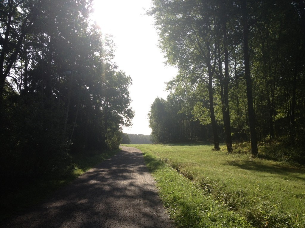 Mammablogg, Morningrun