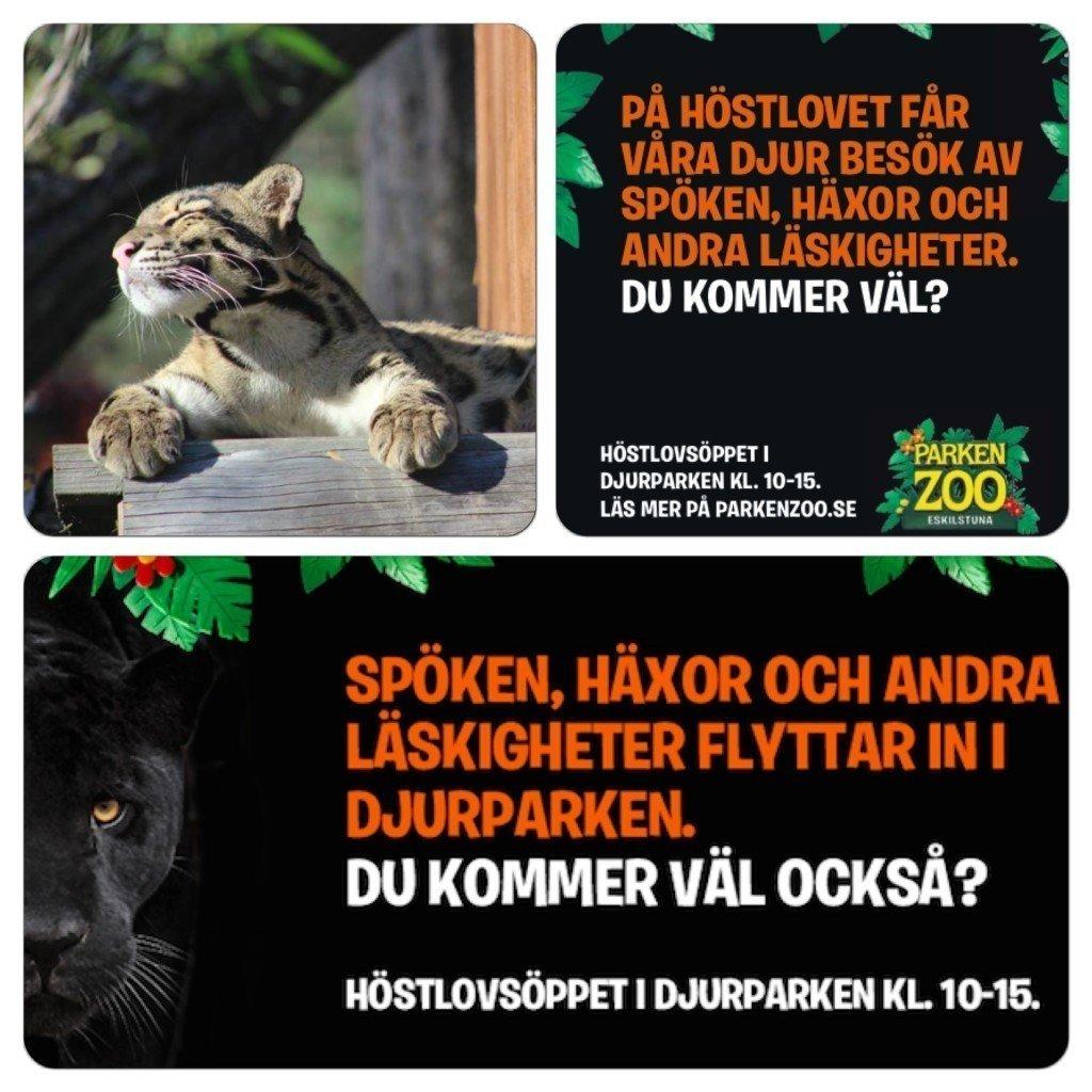 Parken Zoo, Fotohella, Mammablogg, Tävling