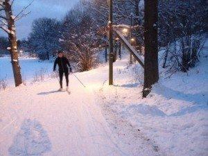 skidor8