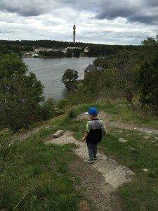 Skansen, Coop, Familjedag, Konsumentföreningen Stockholm, Medlem