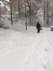 Snö, Snökaos, Sverige, Snöstorm, Fotohella, Blogg