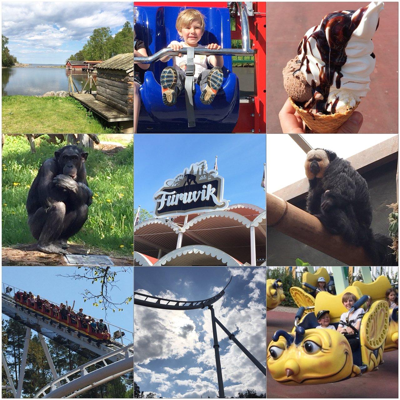Furuviksparken, nöjespark, djurpark, resa med barn, tips