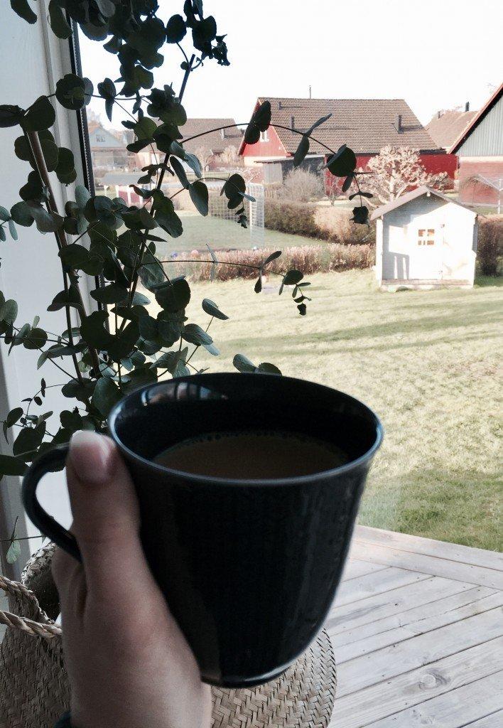 zoegas_morgonkaffe_java_swedish_grace_rörstrand_eucalyptus_morgonsol