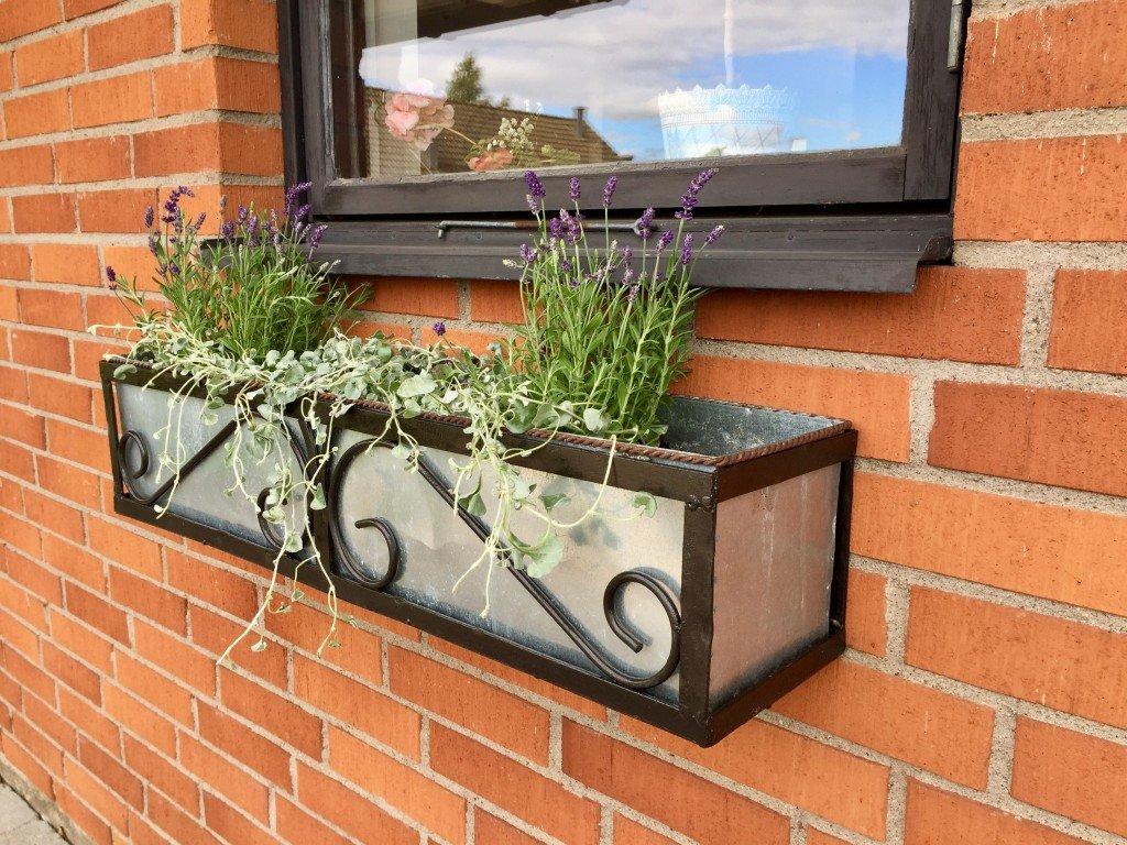 blomsterlåda_i_zink_och_smide_lavendel