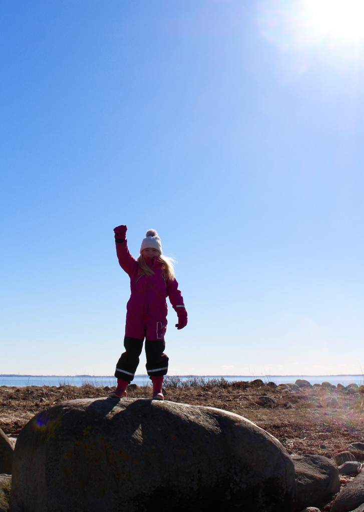 vejbystrand_vejby_udde_hamn_sol_strand_skane_skalderviken_vinterhav_fyser_havsvatten_till_is