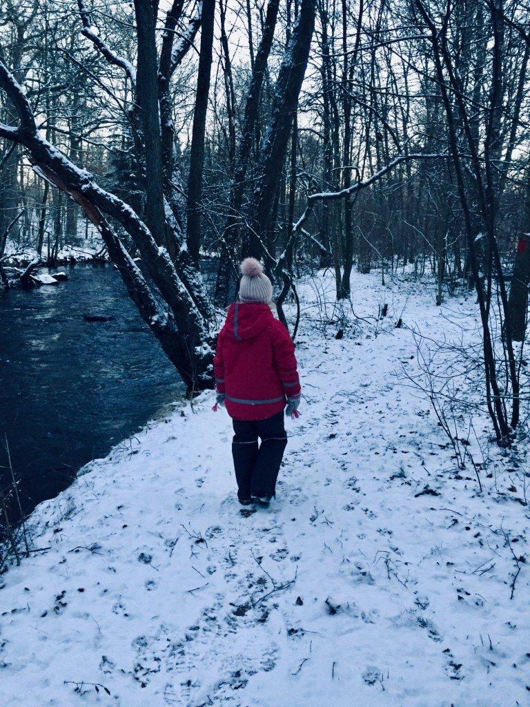 vinter_winter_beljane_a_winterfun_frulilja