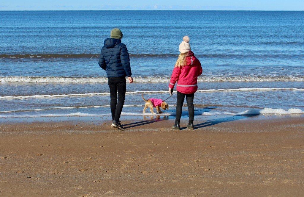 var_sol_mars_stranden_njutning_skalderviken_vejbystrand_frulilja_sally_cockerpoo