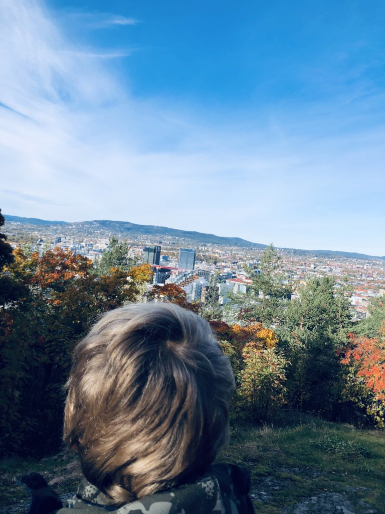 utsikt_Oslo_Ekebergskogen