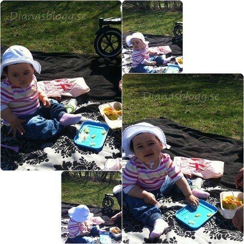 picknick-gubbangen.jpg