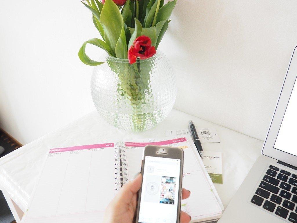 Bloggjobb planerar bloggare lamadre