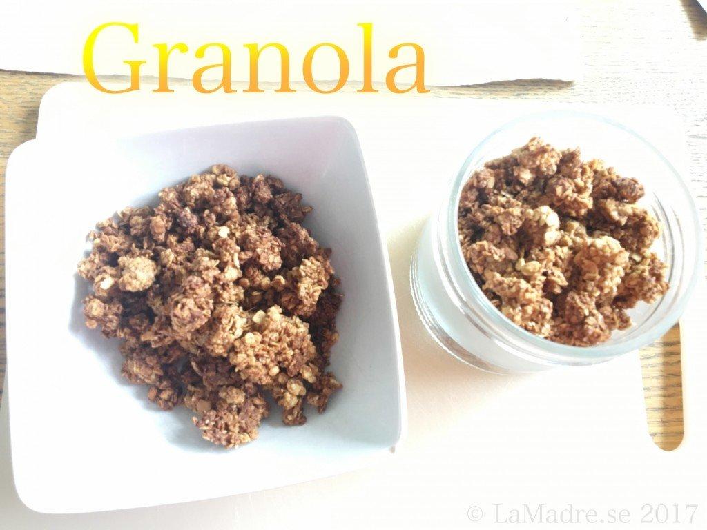 egen_granola_hemlagat_recept_bloggare_lamadre