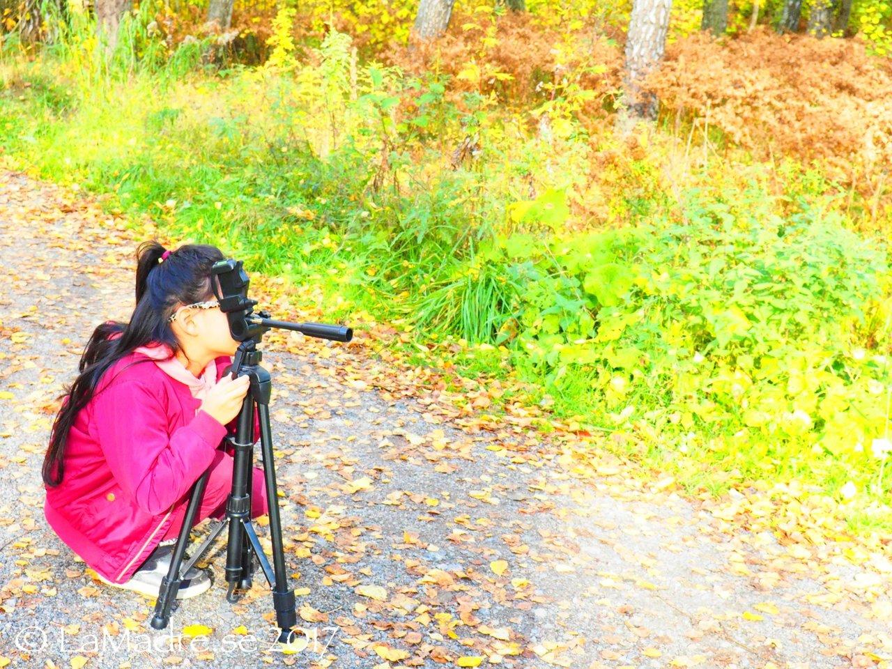 vackert_bilder_bloggare