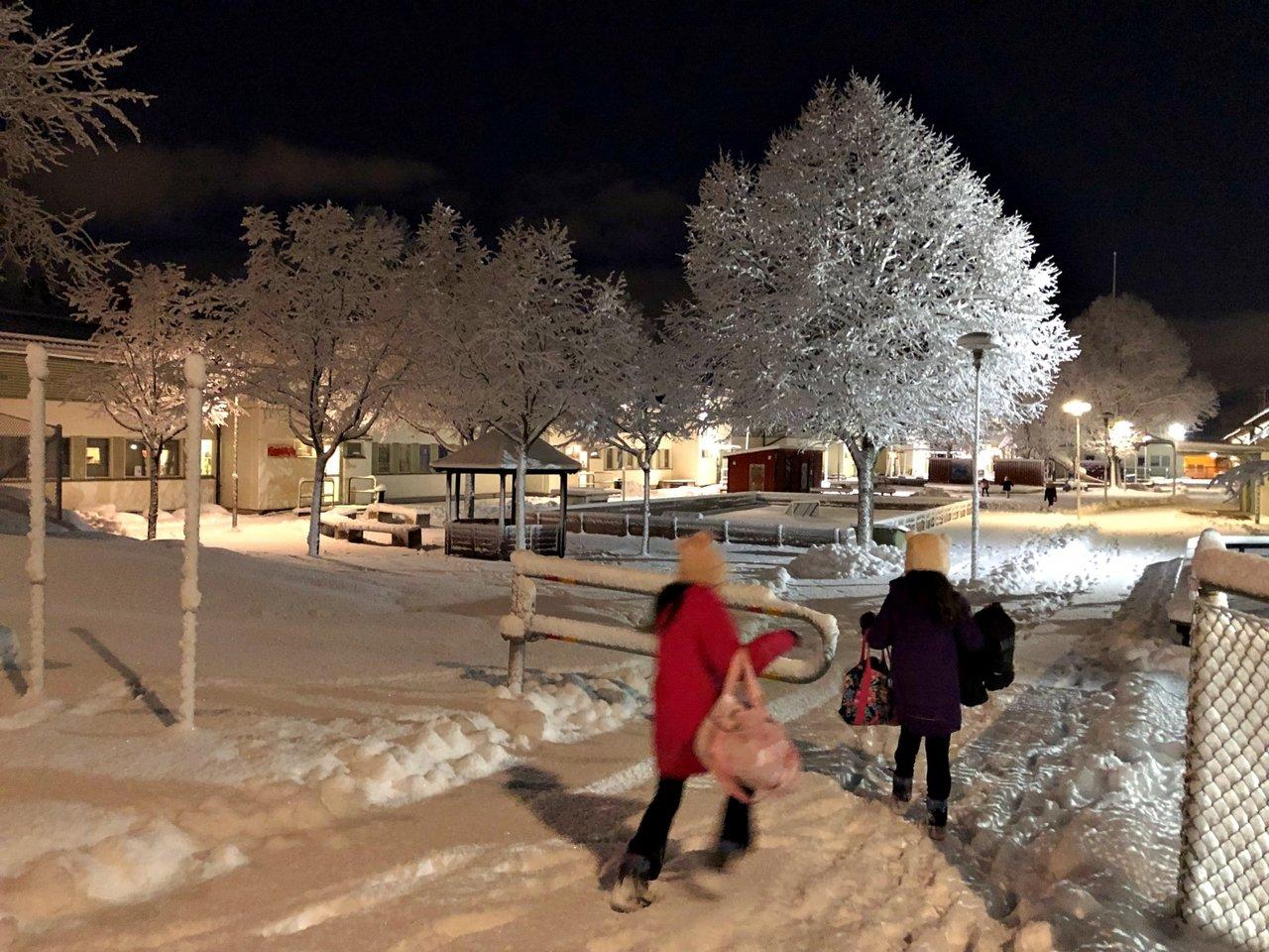 Dianalamadre-sweden-snow