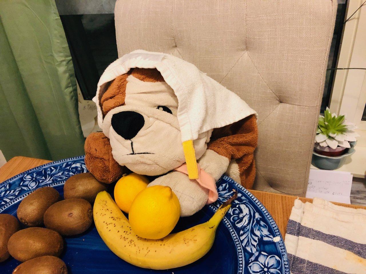 ikea-hund-gosse
