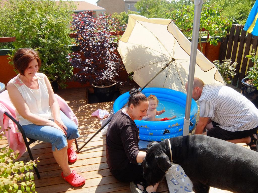 Farmor & farfars hund Zigge vill också vara med.