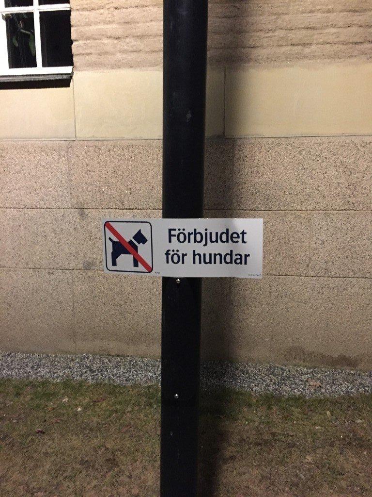 Förbjudet för hundar? What?