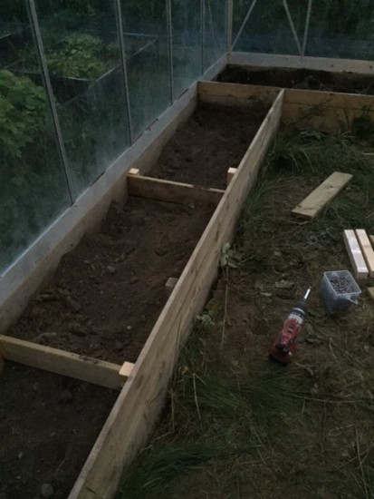 bygga såbäddar i växthus