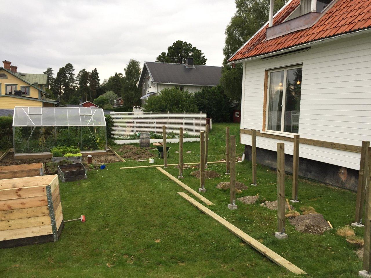 trädgård tips