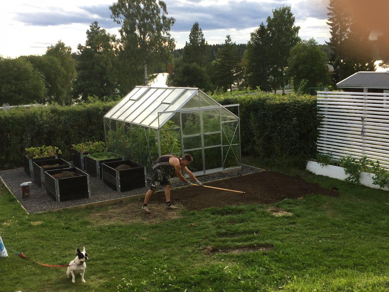 fixa trädgården