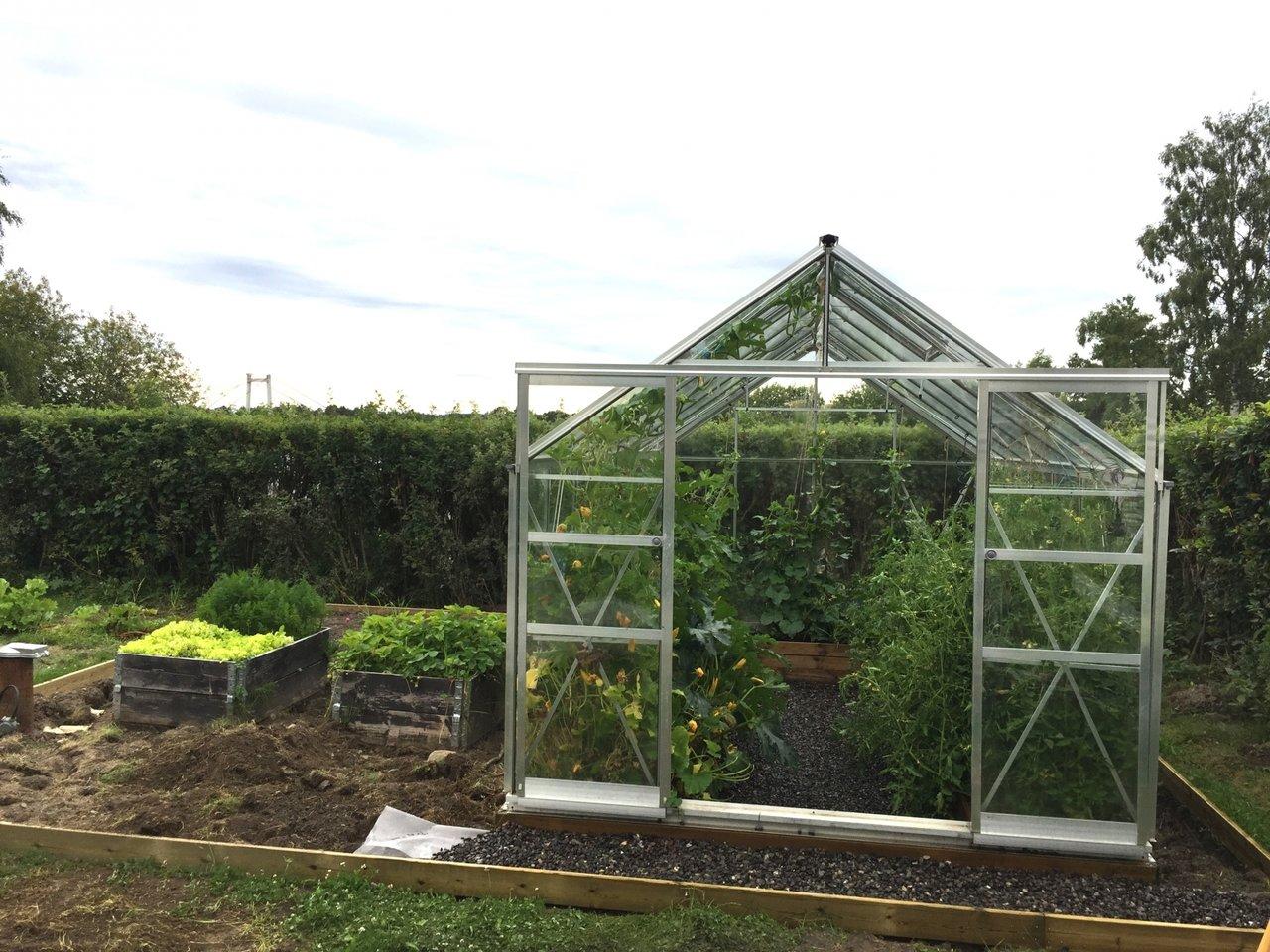 snygg trädgård