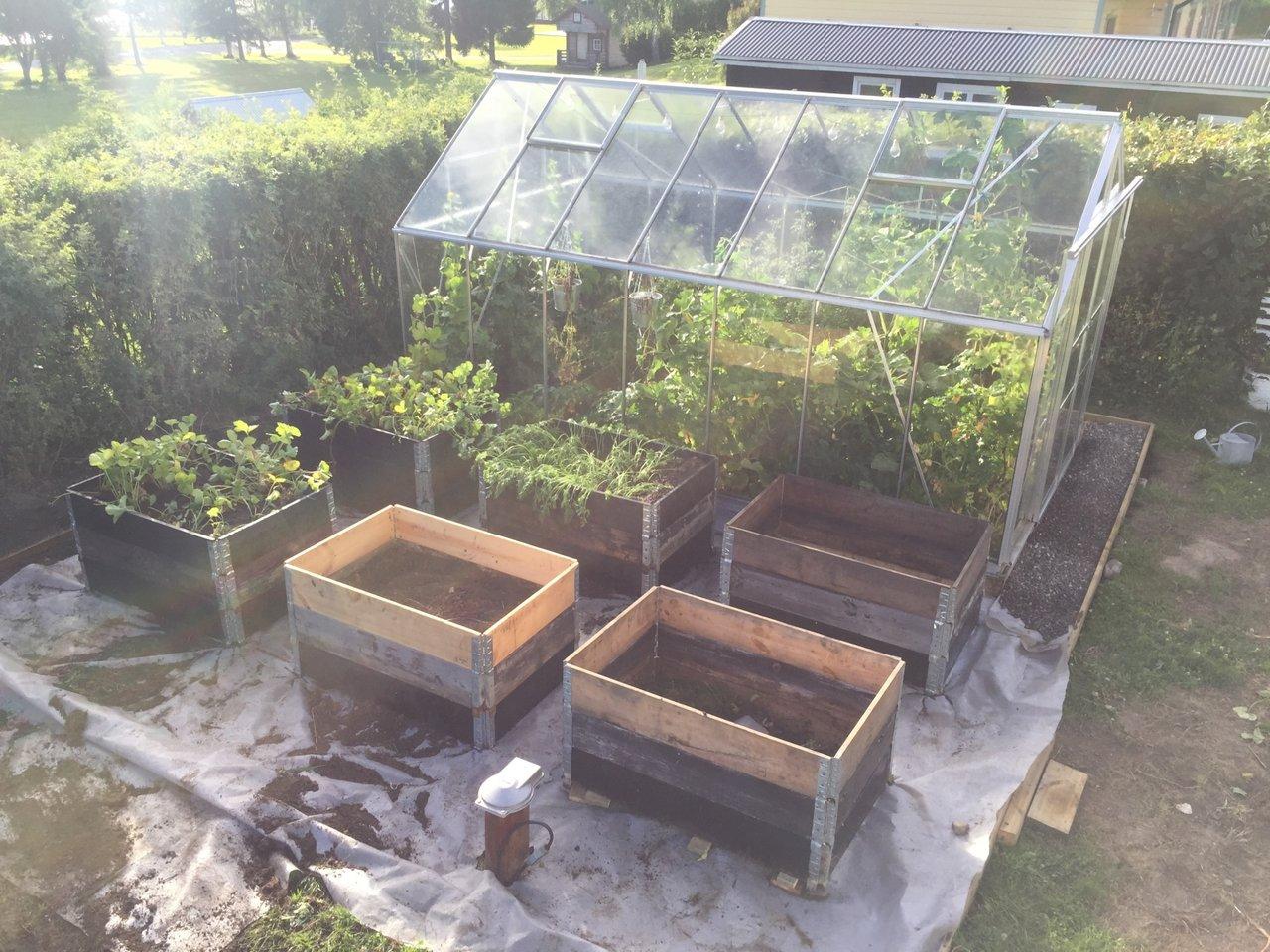 snygga upp trädgården