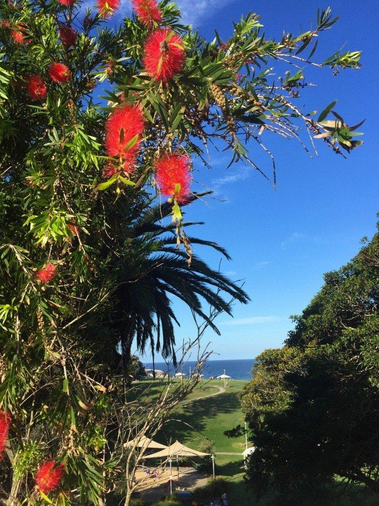 På väg till stranden. Jag eller T säger det i princip varje dag: Jag älskar att bo här!