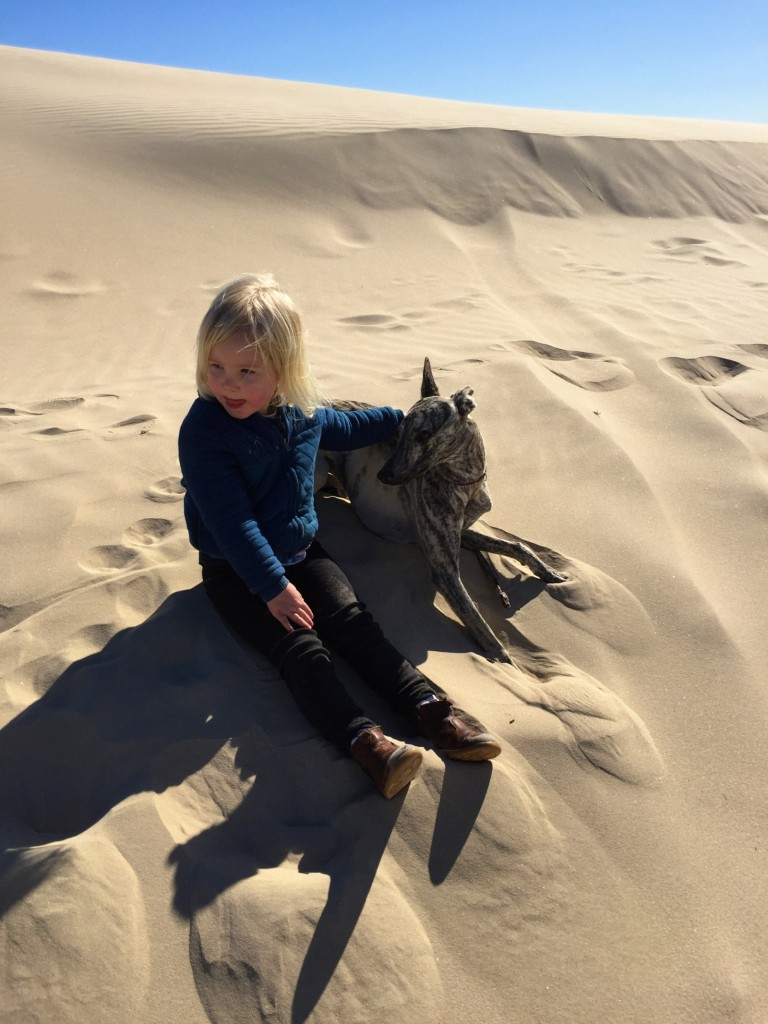 Bilder från helgens sanddyner, Stockton Beach.