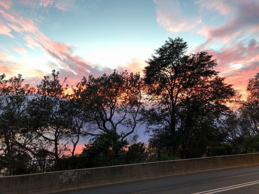 Vacker morgon i Terrigal...