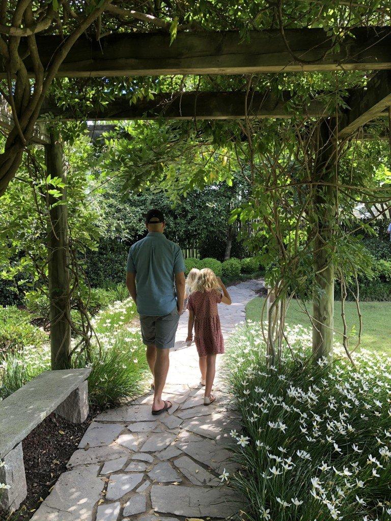 Japanese garden med koifiskar.